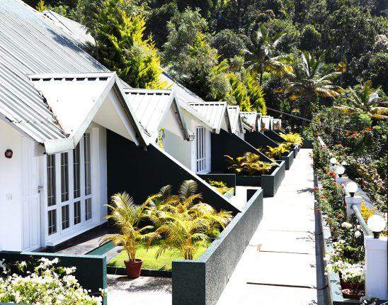 munnar-tea-country-resort