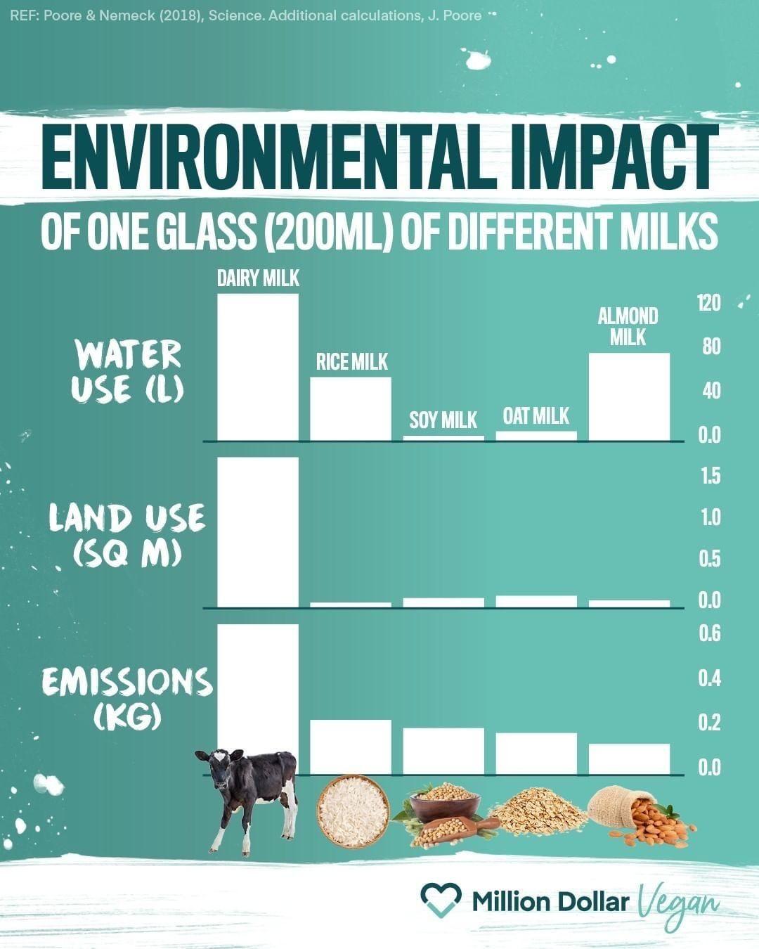 vegan-milk-energy